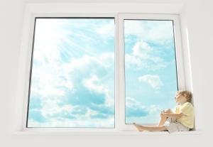 Ritec - Window Boy